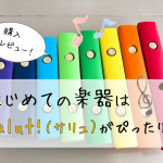 【salut!】はじめて触れる楽器はサリュがオススメ!実際の商品レビューを紹介
