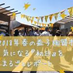 【2018年春】益子陶器市の初日参戦レポート!混雑状況や作家さん・益子グルメを紹介