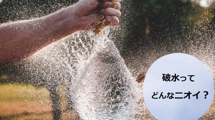 【体験談】破水ってどんなニオイ?生臭いというより○○のニオイにそっくりだった