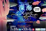【茨城】自然博物館の『深海ミステリー2020』がオトナも気になる!
